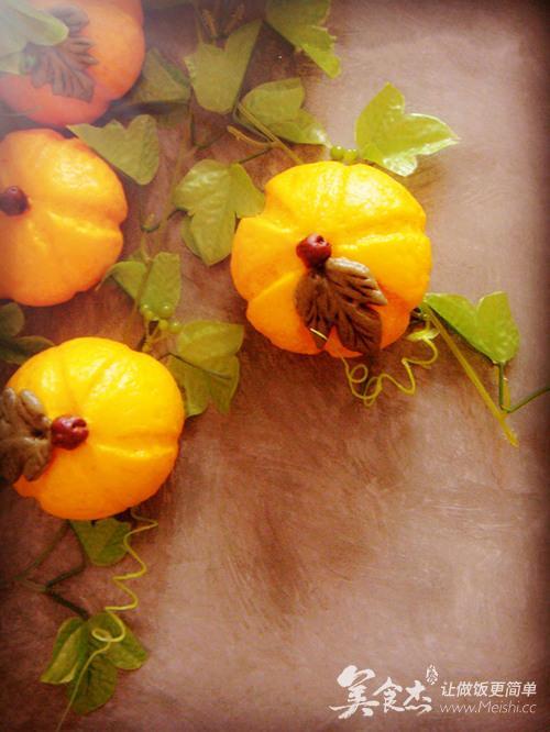 南瓜根茎叶结构图片