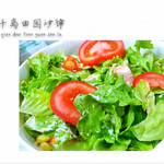 廖小厨传承爷爷的味道田园沙拉的做法