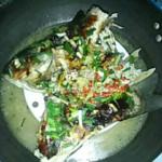 杰米7839411593清蒸鱼的做法