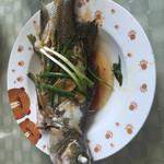 青(来自微信.)清蒸鱼的做法