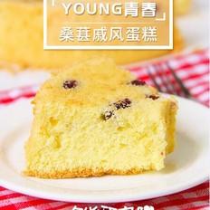 YOUNG青春--桑葚戚风蛋糕