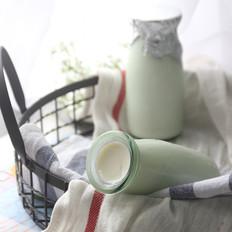 自制烤箱版瓶装浓稠酸奶