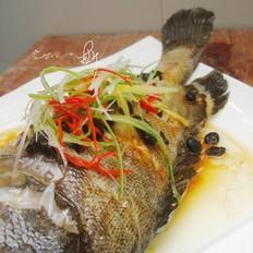 豆豉蒸石斑鱼