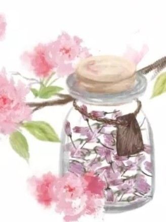 手绘食谱:盐渍樱花 手造的暖意 任何工业化商品都比不过的做法