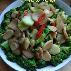 兰花杏鲍菇的做法[图]