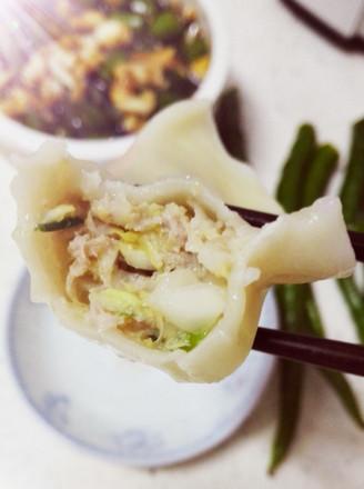 饺子猪肉馅白菜的做法_家常食品猪白菜饺子的肉馅专营店九月图片