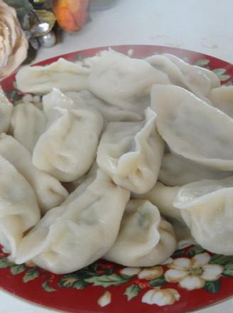 煮饺子的做法【步骤图】_菜谱_美食杰
