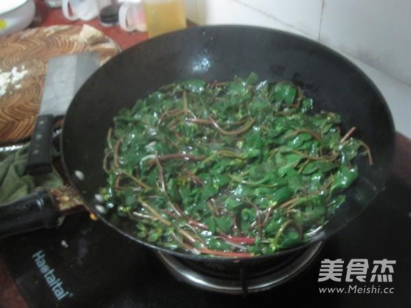 凉拌马齿苋的做法 家常凉拌马齿苋的做法 凉拌马齿苋的家常做法大全