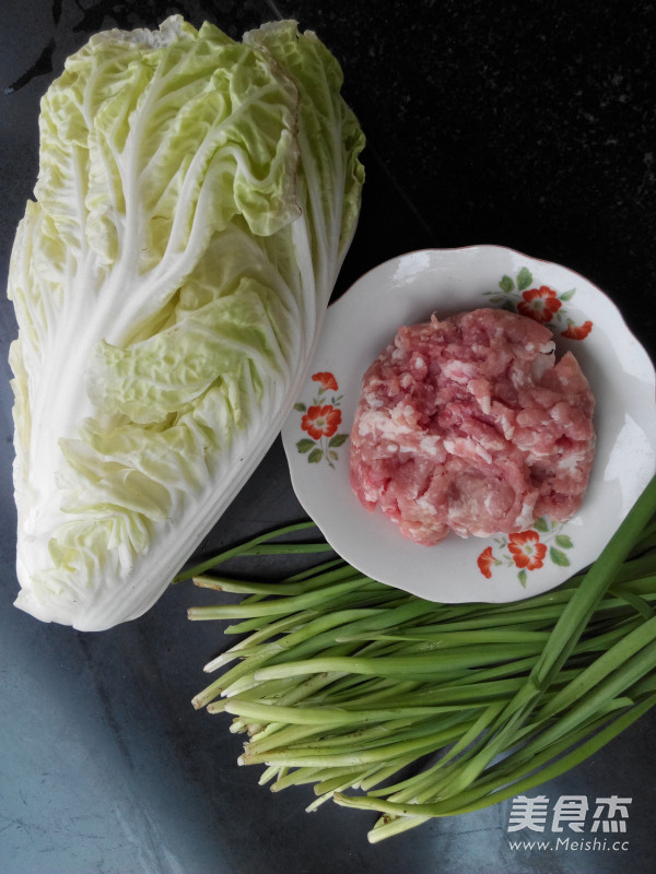 做法韭菜猪肉饺子馅的韭菜_猪肉家常白菜白菜长了十几年的迷迭香图片