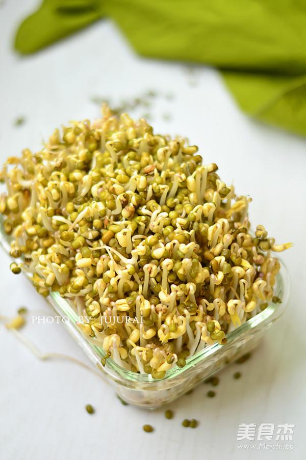 自制绿豆芽的做法_家常自制绿豆芽的做法【图】自制