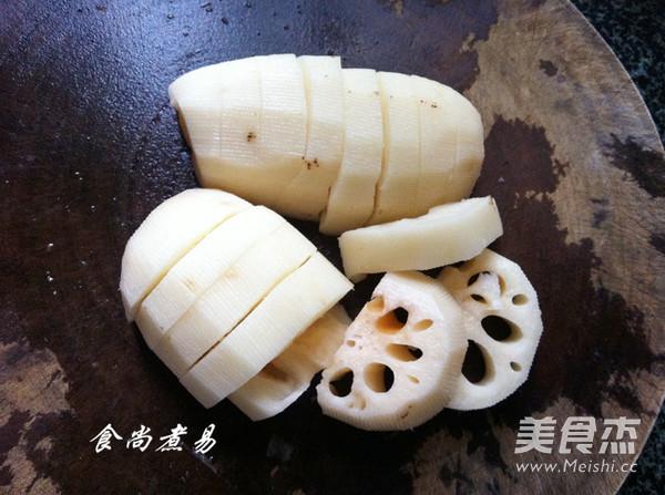 玉米根横切结构示意图