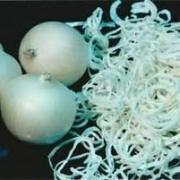 洋葱(白皮,脱水)