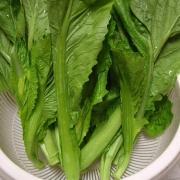 24大卡(100克) 分类: 嫩茎,叶,花菜类排名:  第41位 菜谱: 芥菜介绍图片